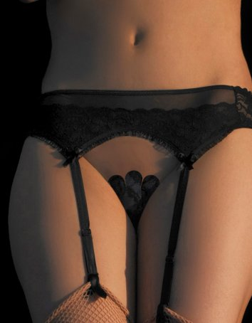 Lace and Tulle Garter Belt