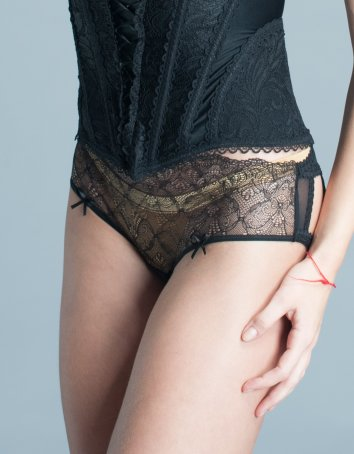 Sheer Luxury Lace and Tulle Panty